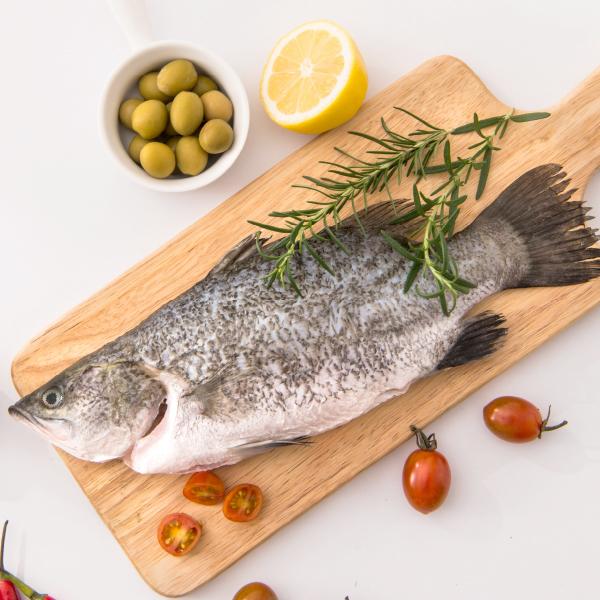 安永鮮物-金目鱸魚,肉質細緻,滋味甘甜